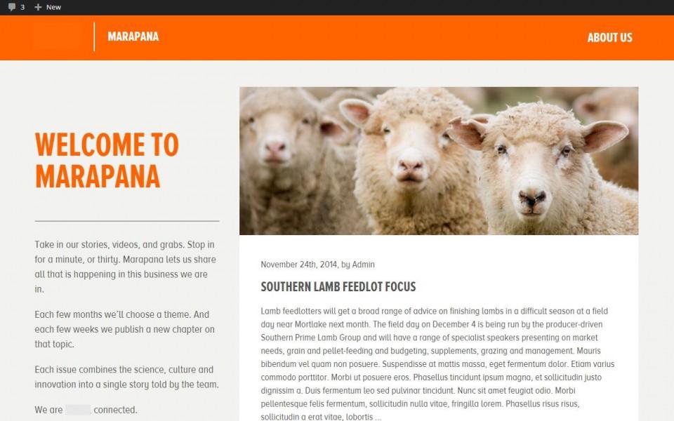 Livestock Blog - Homepage